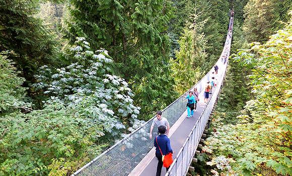観光客に人気のキャピラノ吊り橋(カピラノ吊り橋)でスリルを味わう!
