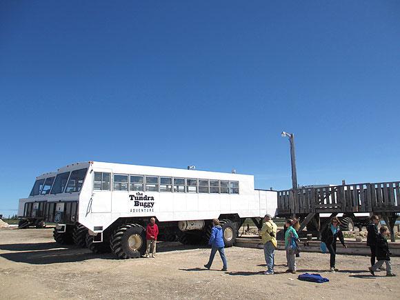 tundra-buggy